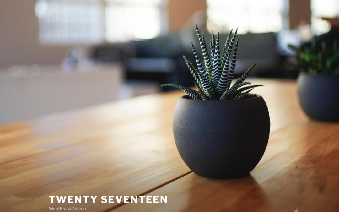 Twenty Seventeen WordPress Theme