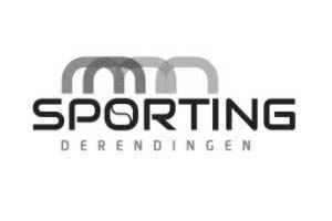 https://sporting-derendingen.ch/wp/