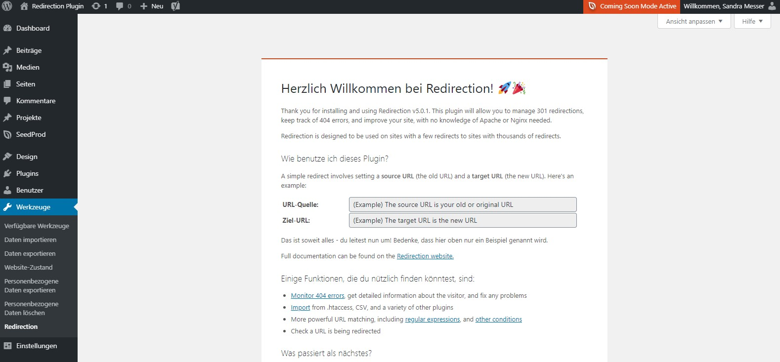 WordPress Plugin Redirection Einstellungen