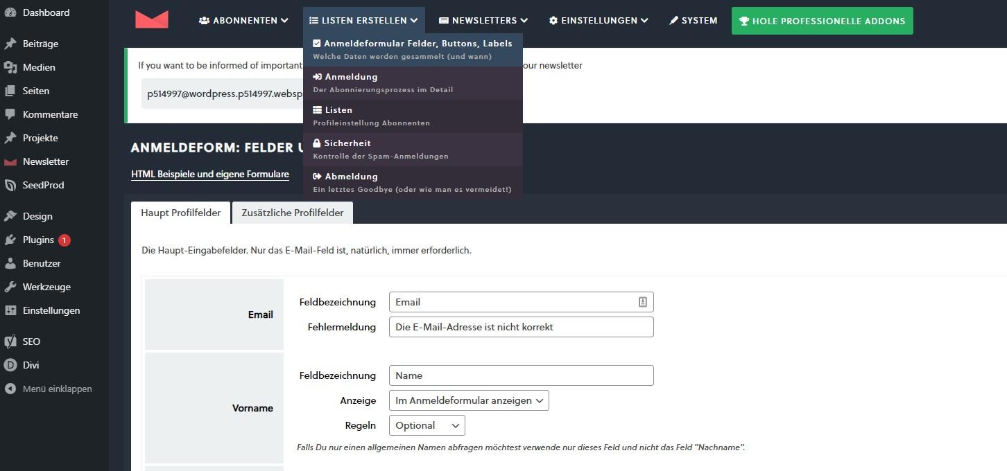 WP Newsletter Plugin Formular Felder